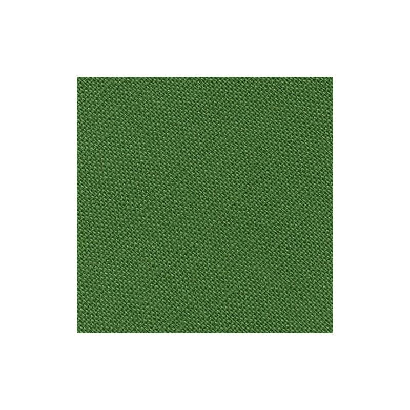 25m - 0057 vert fougère